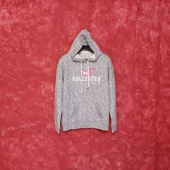 Hoodie Hollister Logo Graphic Pullover Hoodie Abu Misty result